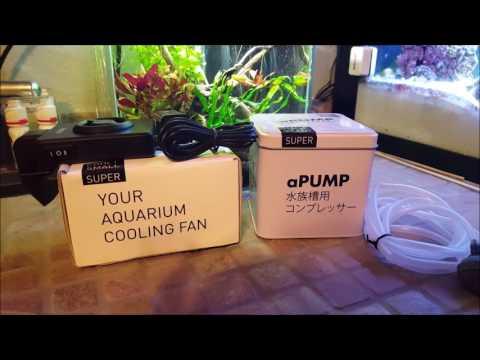 Dronix-Pro 2.5 Gallon aGlass Desktop Aquarium Review