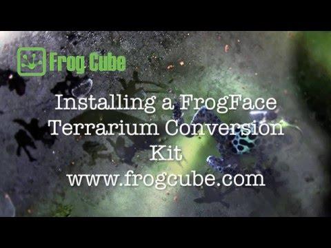 FrogFace Installation