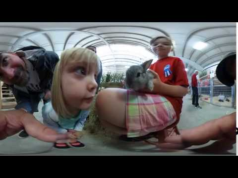 Kids Carnival Animals - A Soft VR Baby Bunny in Your Face!