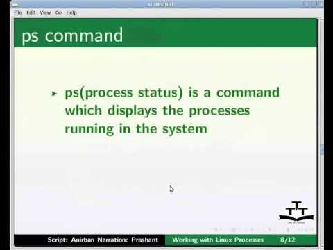 Working with Linux Process - English
