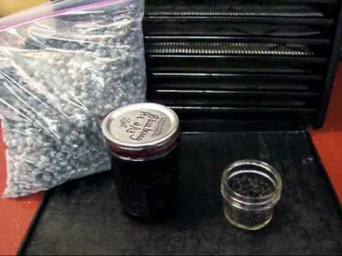 A trick for Dehydrating Blueberries