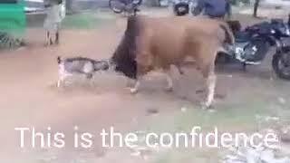 Best motivational video ,