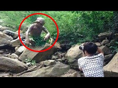 MOST Mysterious Creatures Caught on Camera