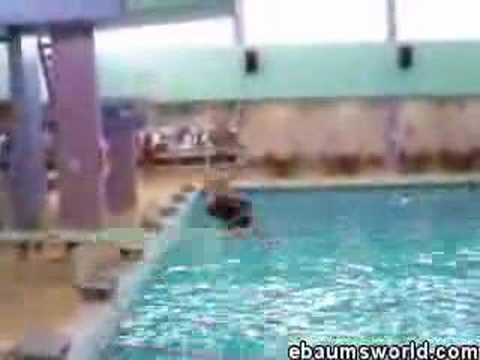fat & funny diving board