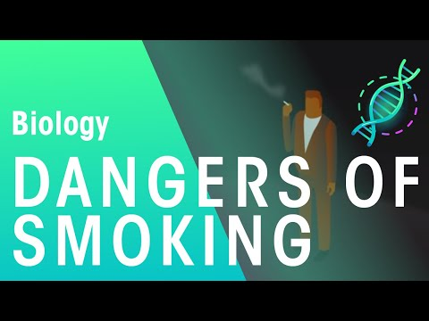 Dangers of smoking | Biology for All | FuseSchool