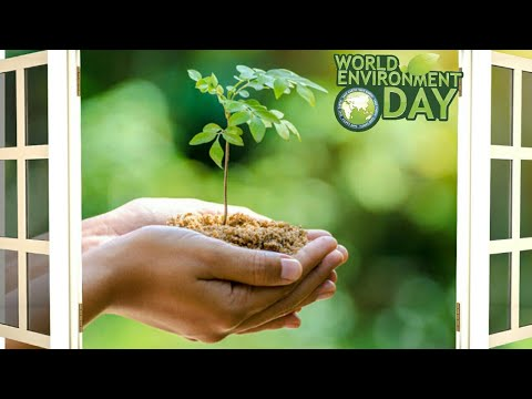 Happy World Environment Day 2018🌱WhatsApp Status Video, Wishes, Greetings, SMS, Quotes