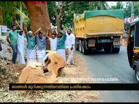 Trees cut for highway : Protest fumes in Chettupuzha Thrissur