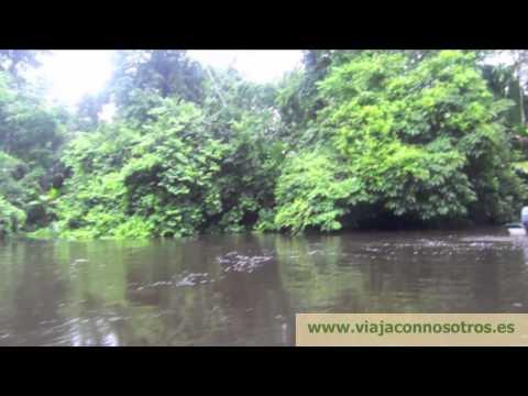 costa rica: tortuguero, arenal, guanacaste