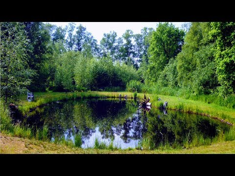 Naturteich Anlegen Ohne Folie 300m Gunstig Schon Natur Garten