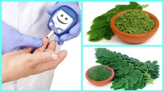 ►►http://livehealth.site/diabetes◄◄   Click Here to Start   How can i use Moringa to Cure Diabetes  The leaves of the Moringa oleifera tree are one of Asia