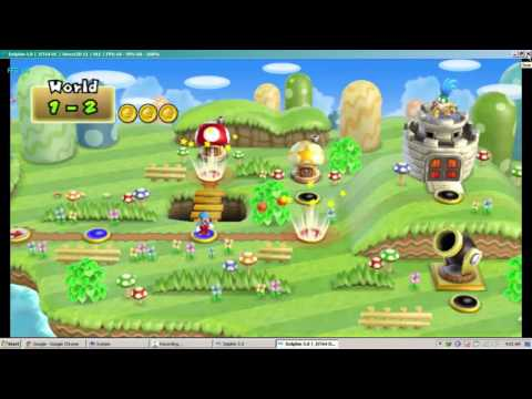 Dolphin Emulator 5.0 running on
