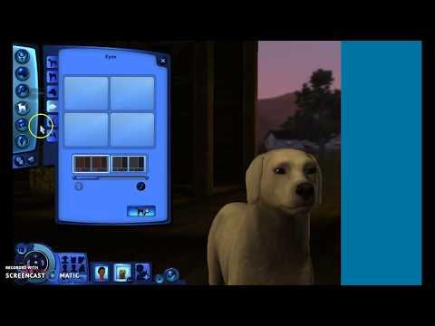 How to Make a Lab Sims 3 Pets *READ DESCRIPTION*