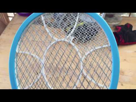 AOWOTO Electric Fly Mosquito Swatter Showcase and Review