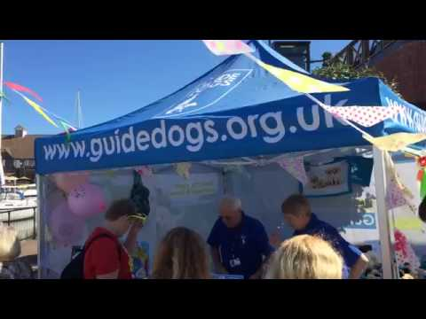 Guide Dogs for the Blind-Their Stories