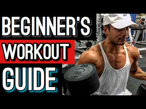 Workout Guide | Burn Fat and Build Muscle