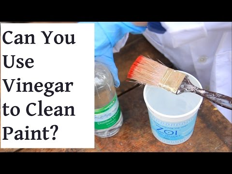 Can you use Vinegar to Clean Paint Brushes?