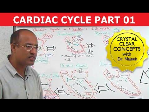 Cardiac Cycle - Systole & Diastole - Part 1/8