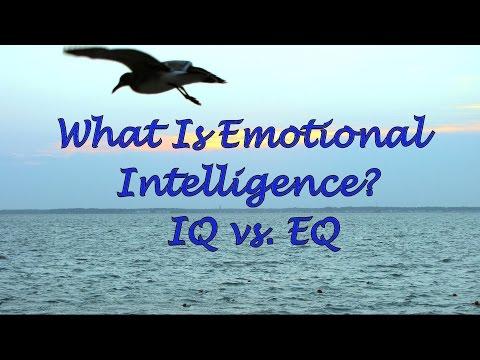 What Is Emotional Intelligence? IQ vs  EQ