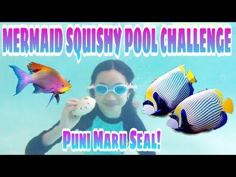 Mermaid Squishy Pool Challenge with Puni Maru Seal & So Much More!!! Spring Break 2018 Vlog
