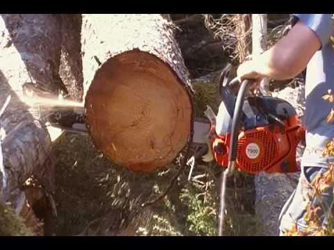 Dolmar 79cc Chainsaw (First Cuts)