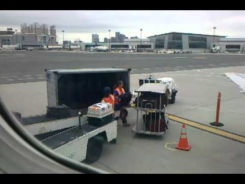 Pet transport via United Airlines (Continental) cargo in Boston