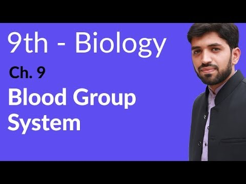 Blood Group System - Biology Chapter 9 Transport biology - 9th Class