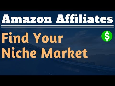 How to Find a Niche Market For Your Website - Lesson #2 - Amazon Affiliate Marketing Training