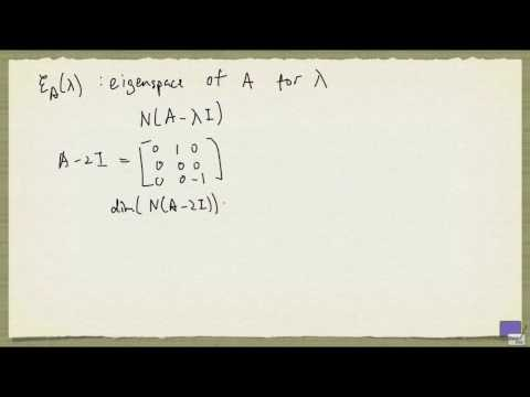 Week 10 - Algebraic and Geometric Multiplicities of an Eigenvalue