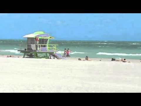 Forestlake Apartments in Daytona Beach, FL - ForRent.com