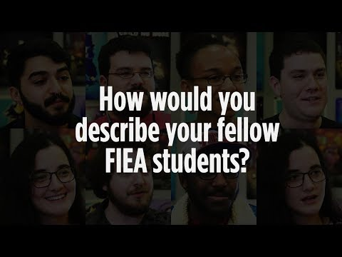 How would you describe your fellow FIEA students?