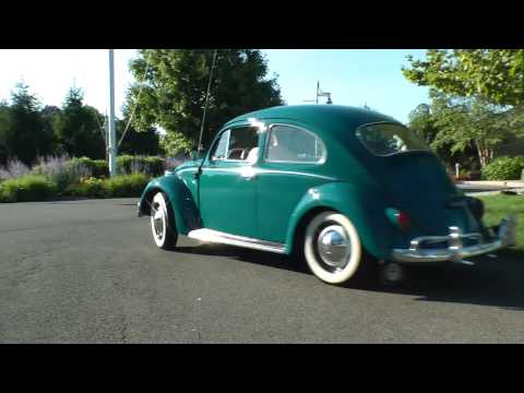 Classic 1964 VW Beetle Bug Restored for Sale on eBay