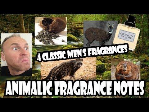 Animalic Fragrance Notes Explained & 4 Classic Fragrance Examples