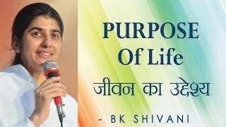 PURPOSE Of Life: Ep 22 Soul Reflections:BK Shivani (English Subtitles)