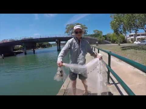 Cast Netting Technique - 9 ft Cast Net