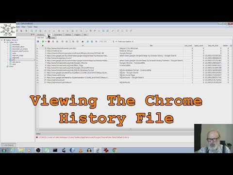 Viewing The Chrome History File