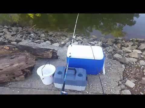 Fishing for Bluegill to Stock My Pond