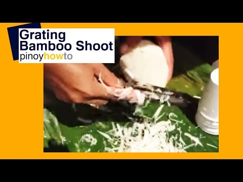 Bamboo plant: Bamboo Shoot – How to Grate Using an Improvised Knife | Pinoy How To
