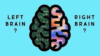 Functions of brain hemispheres