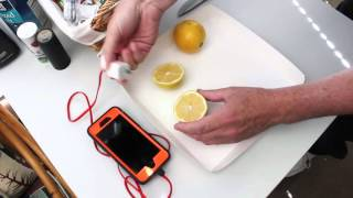 Can You Charge A Phone With A Lemon?