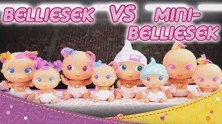 Bellies VS. mini Belliesek
