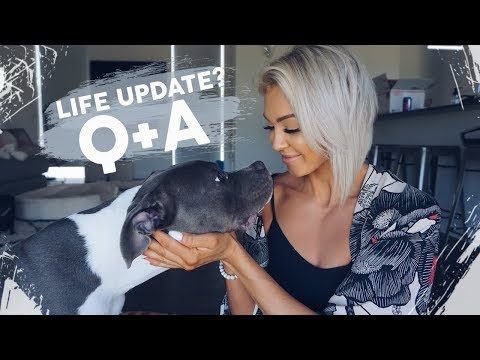 Life Update? Instagram Q&A