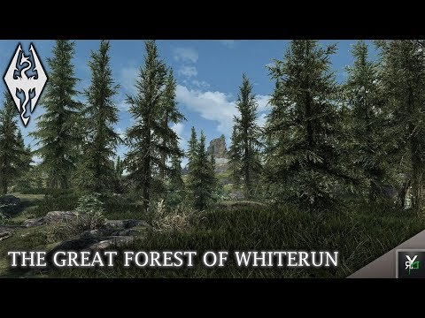 THE GREAT FOREST OF WHITERUN: Land Overhaul Mod!- Xbox Modded Skyrim Mod Showcase