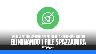 Trucchi WhatsApp: eliminare le vecchie foto e i file spazzatura in un click per recuperare spazio in
