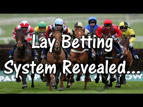 horse lay betting system - Become The Bookie
