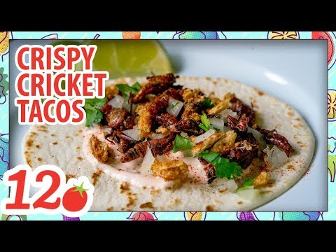 How to Make: Crispy Cricket Tacos