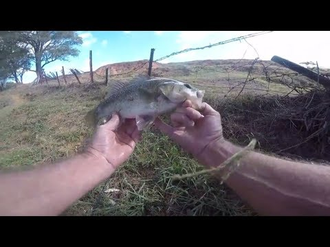 Australian Bass fishing tips. Winter is coming and they know it.