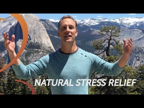 Shaking Stress Exercise Natural Stress Relief in Yosemite Qigong Expert Lee Holden