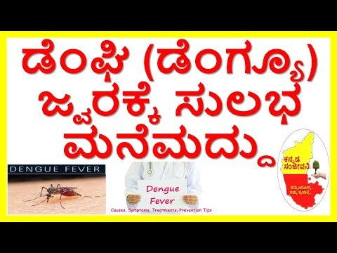 Best Home Remedies for Dengue fever...Kannada Sanjeevani..