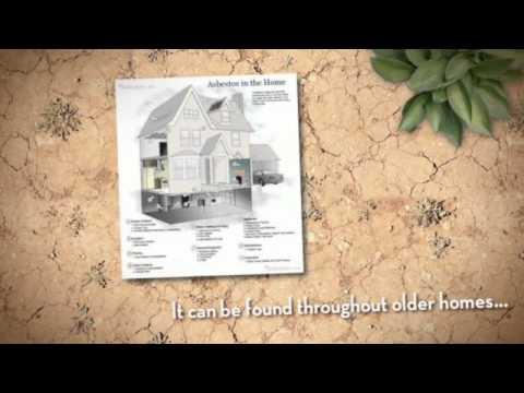 Asbestos & Mold Removal Minneapolis MN 952-920-8938