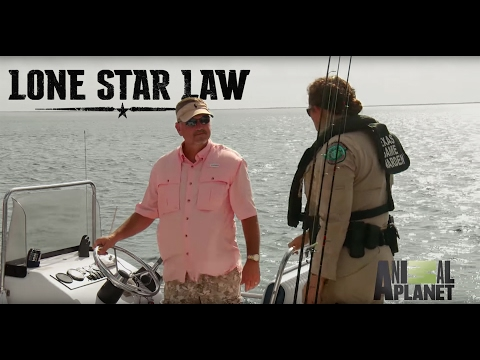 Boat Safety and License Compliance
